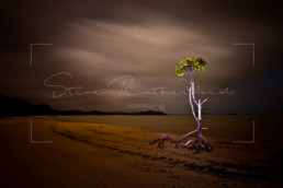 Pajinka, Cape York, Queensland - Steve Rutherford Landscape Photography Art Gallery