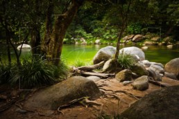 Hidden, Mossman Gorge - Steve Rutherford Landscape Photography Art Gallery