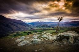 Tolerant, Gibbston, NZ - Steve Rutherford Landscape Photography Art Gallery