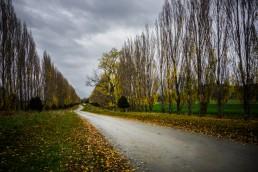Heading Home, Kingston, NZ - Steve Rutherford Landscape Photography Art Gallery