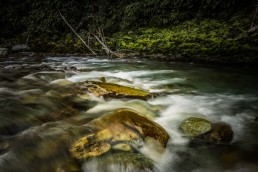 Downstream, Routeburn Track, NZ - Steve Rutherford Landscape Photography Art Gallery